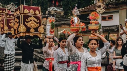 Why do we celebrate festivals